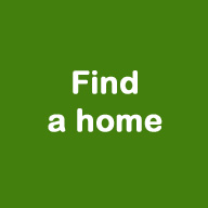 Click to find a home.
